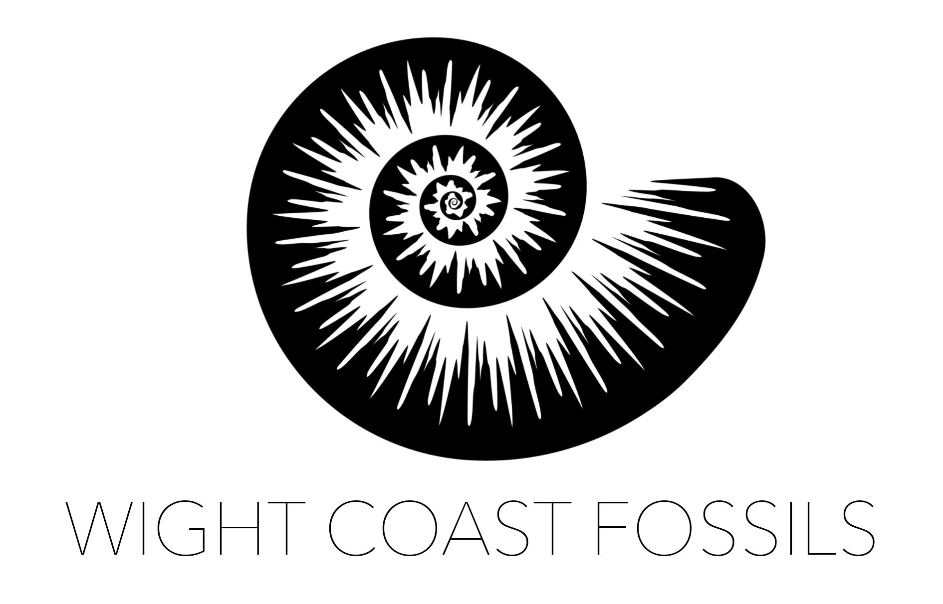 Wight Coast Fossils